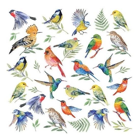 20x Feest servetten vogels 33 x 33 cm