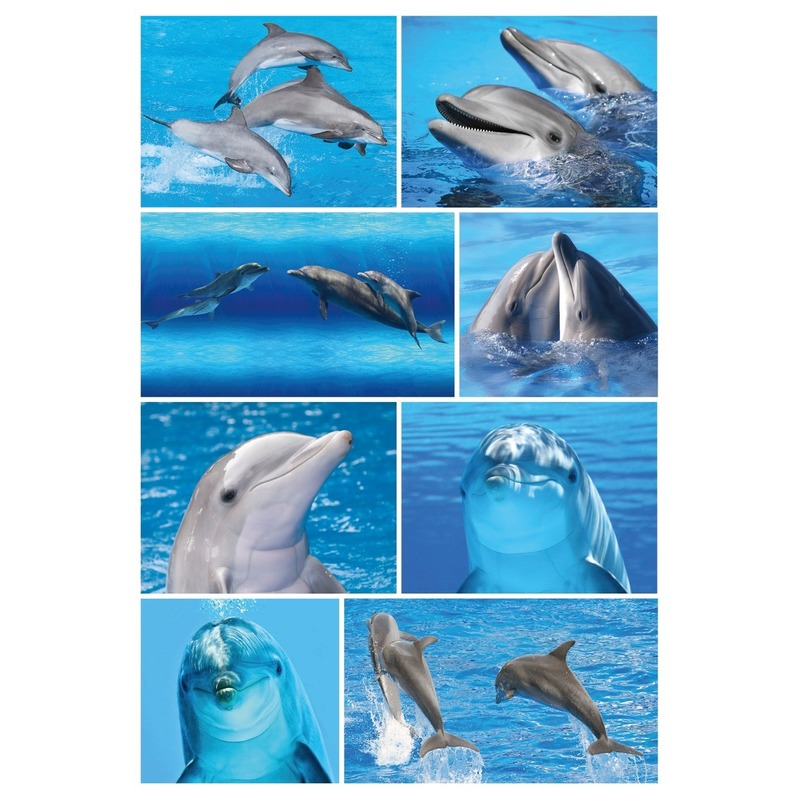 9x Dolfijn stickervellen met 8 stickers