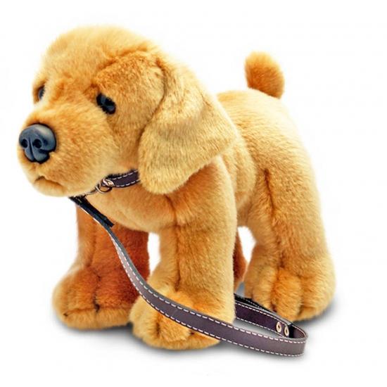 Aangelijnde knuffel Labrador