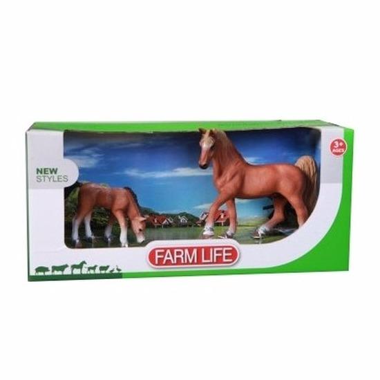 Arabier paard met veulen setje