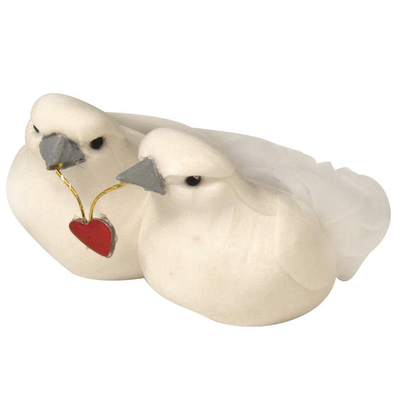 Bruiloft duiven paar met hartje