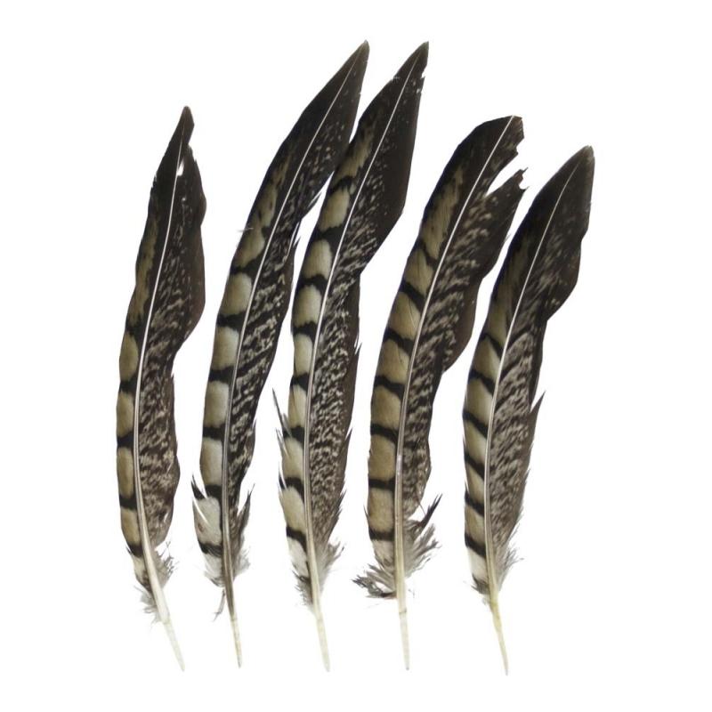 Decoratie fazant veren 18 cm 5 stuks