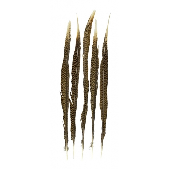 Decoratie goudfazant veren 50 cm 5 stuks