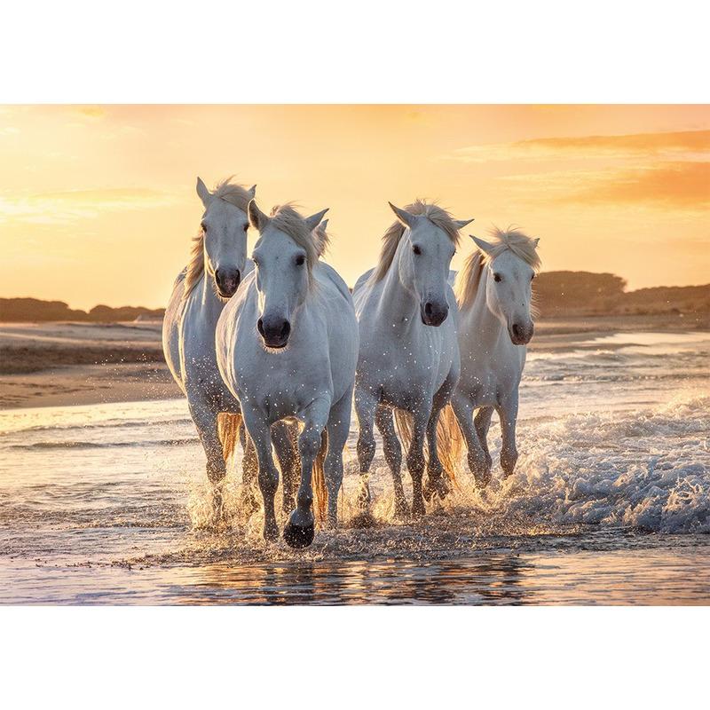 Dieren kinderkamer poster kudde witte paarden in de zee 84 x 59 cm