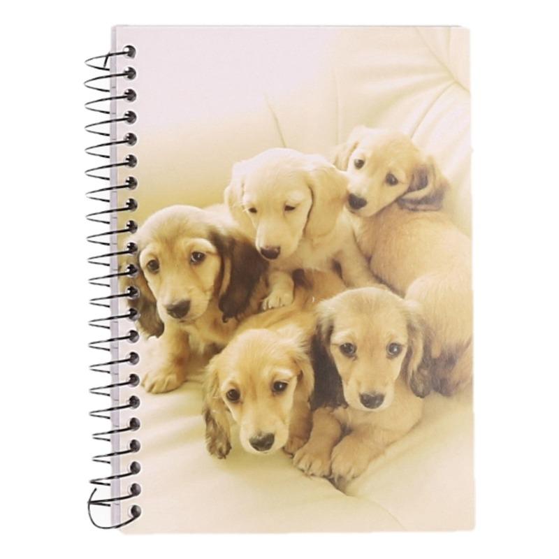 Dieren schriftje A6 golden retriever pups