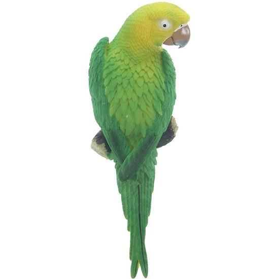 Groen tuindecoratie beeld ara papegaai vogel 31 cm