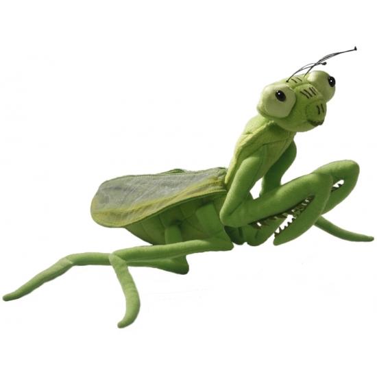 Groene bidsprinkhaan 35 cm