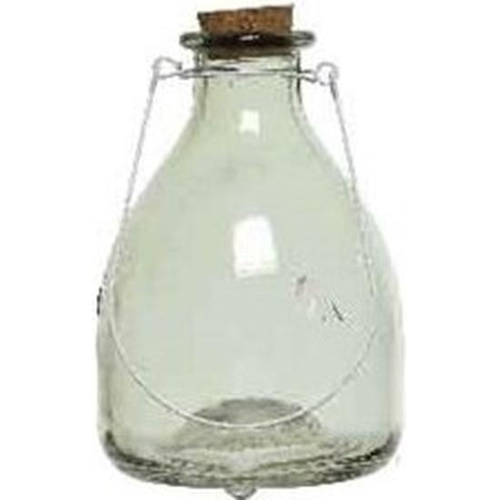 Afbeelding Groene insectenval/insectenvanger 18 cm van glas door Animals Giftshop