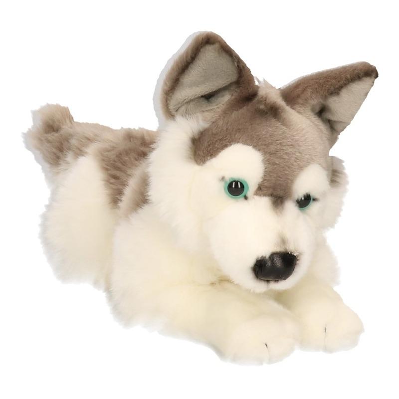 Grote Husky hond knuffeltje 30 cm