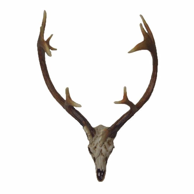 Hert schedel met gewei voor aan de muur 50 cm