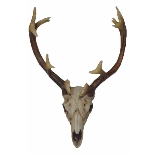 Herten gewei voor aan de muur 26 cm