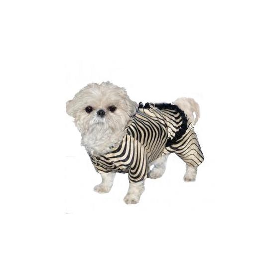 Honden zebra pakje