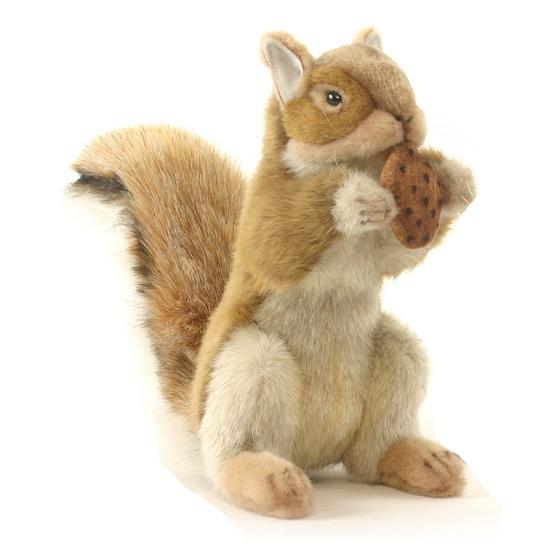Knuffel eekhoorn 22 cm