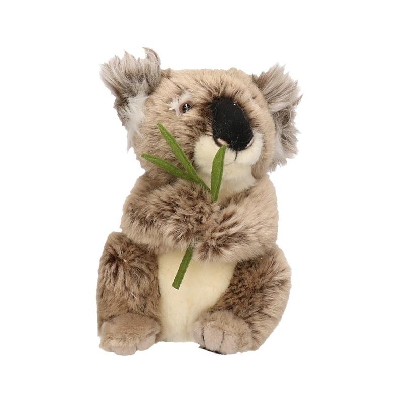 Knuffel koalabeer 17 cm