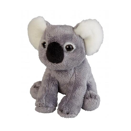 Koala knuffel 15 cm