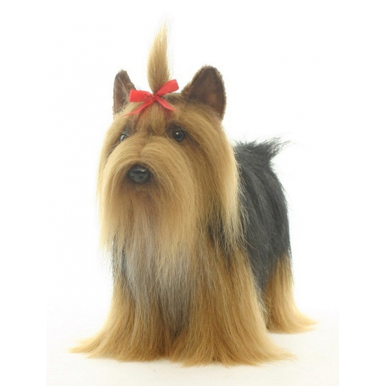 Luxe Yorkshire Terrier knuffels 38 cm
