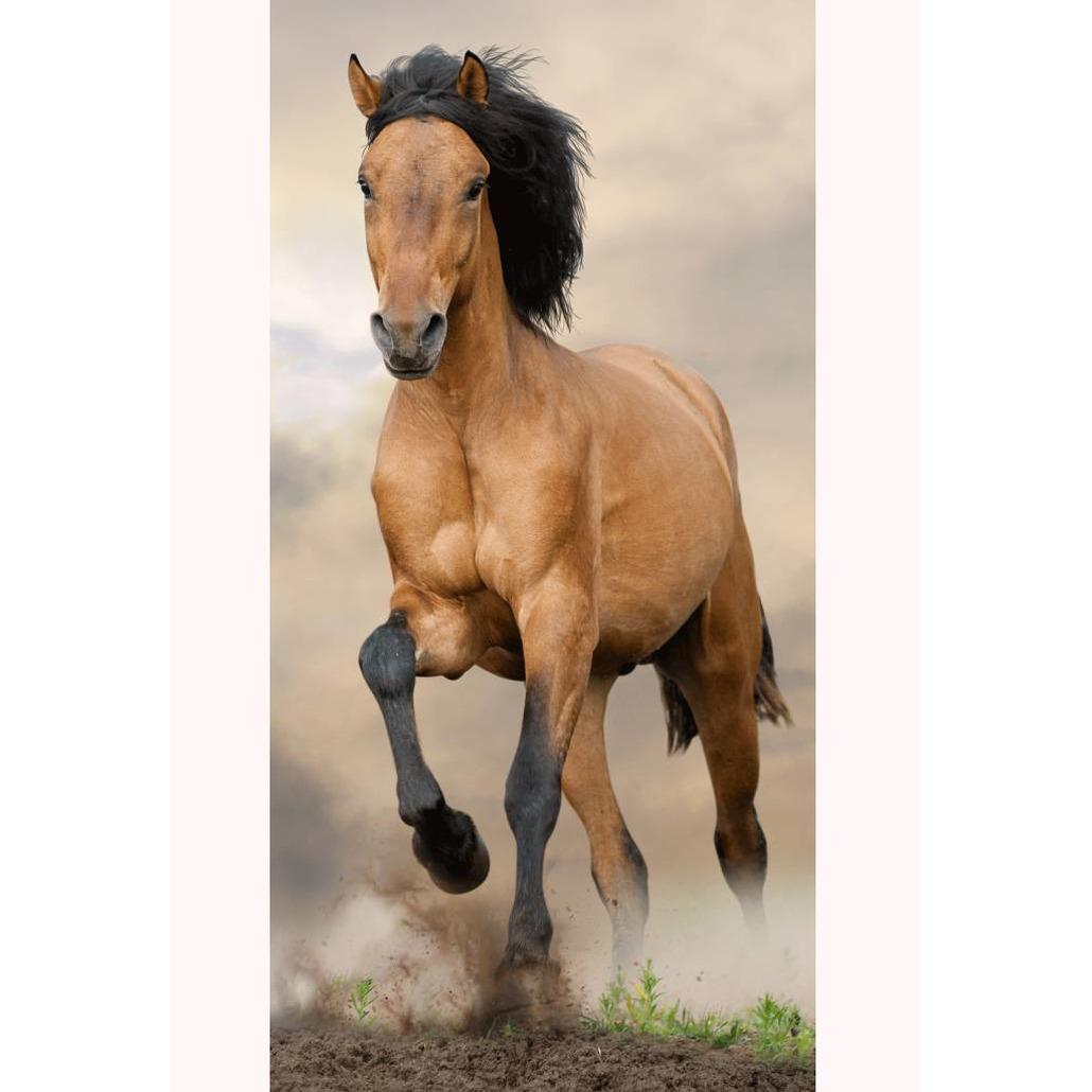 Paard badhanddoek blauw 70 x 140 cm
