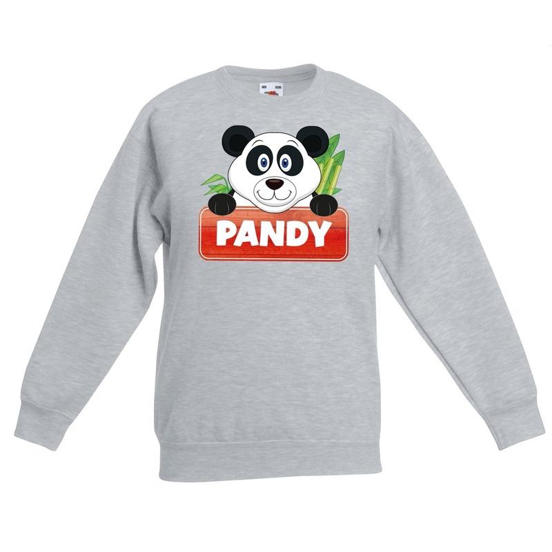 Panda dieren sweater grijs voor kinderen
