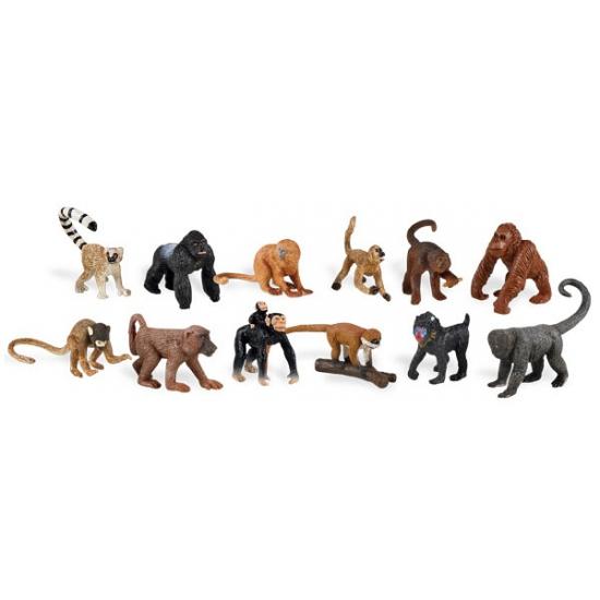 Plastic apen in koker 12 stuks