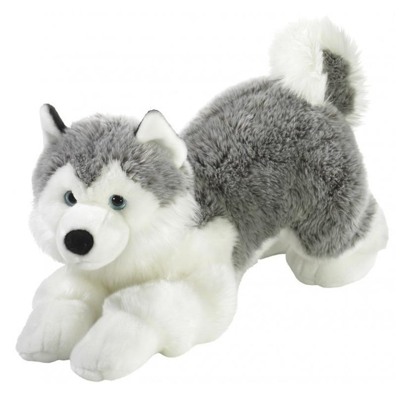 Pluche husky knuffeldier 60 cm