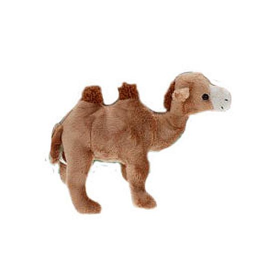Pluche kameel 22 cm