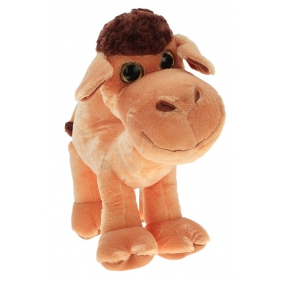 Pluche knuffel kameel/kamelen van 70 cm