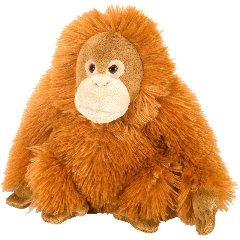 Pluche knuffel knuffeldier Orang Oetan oranje 20 cm