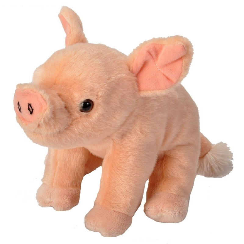 Pluche knuffel knuffeldier varken roze 20 cm
