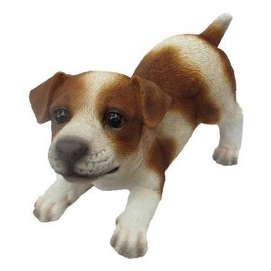 Polystone tuinbeeld bruin/wit Jack Russel puppy hondje 14 cm