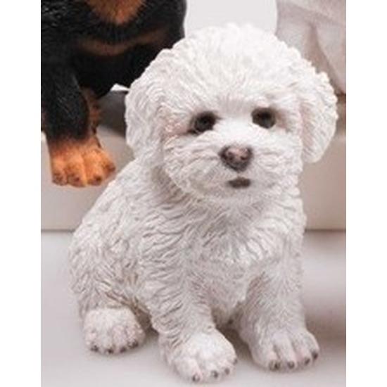 Polystone tuinbeeld wit Maltezer Leeuwtje puppy hondje 15 cm