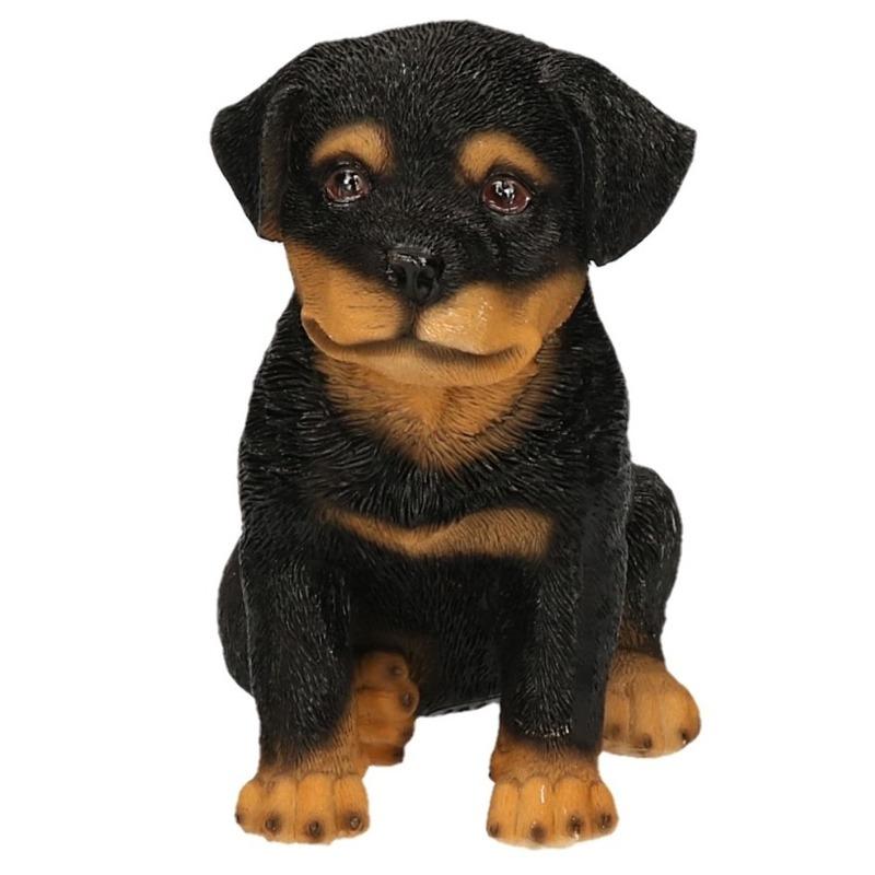 Polystone tuinbeeld zwart Rottweiler puppy hondje 15 cm