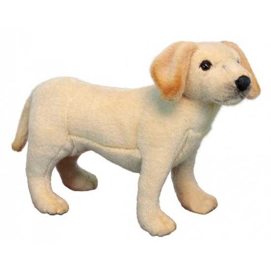 Realischtische pluche Labrador puppy 35 cm