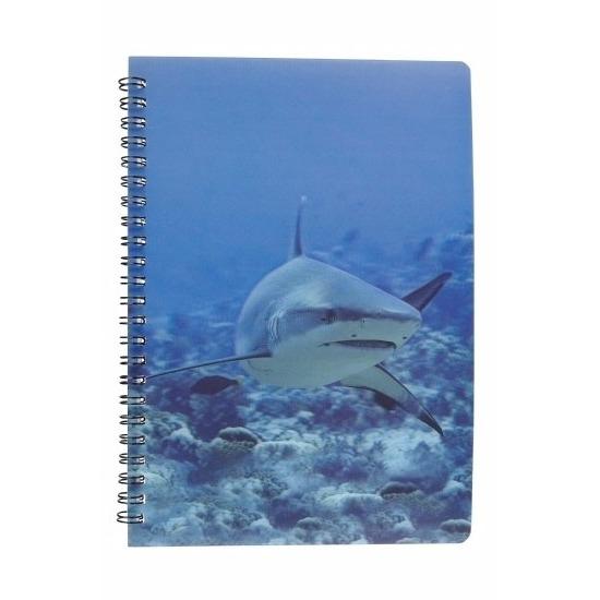 Schriftje haai 3D 21cm