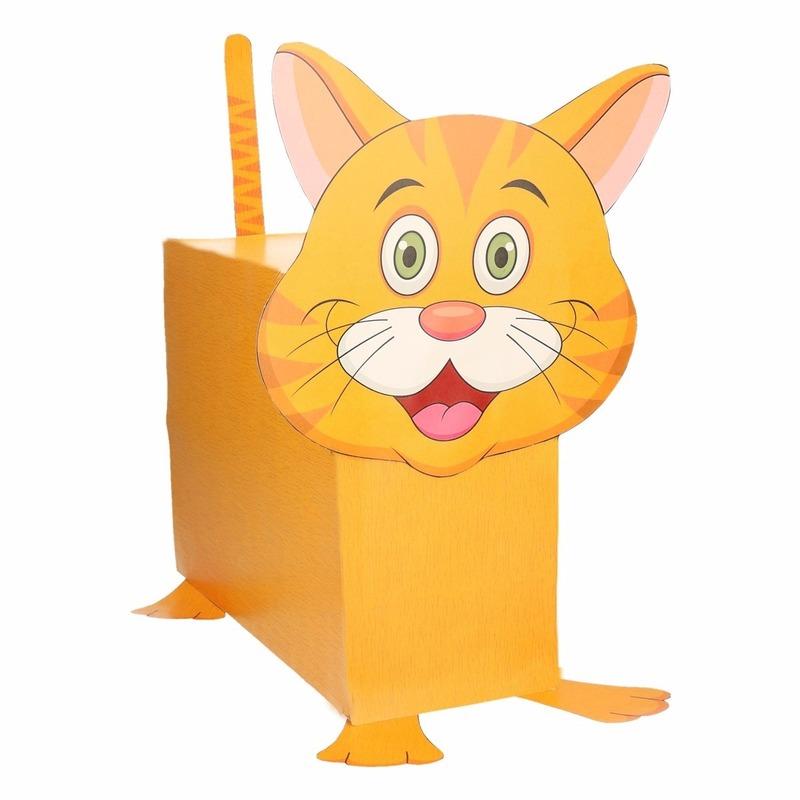 Sinterklaas surprise kat / poes DIY pakket