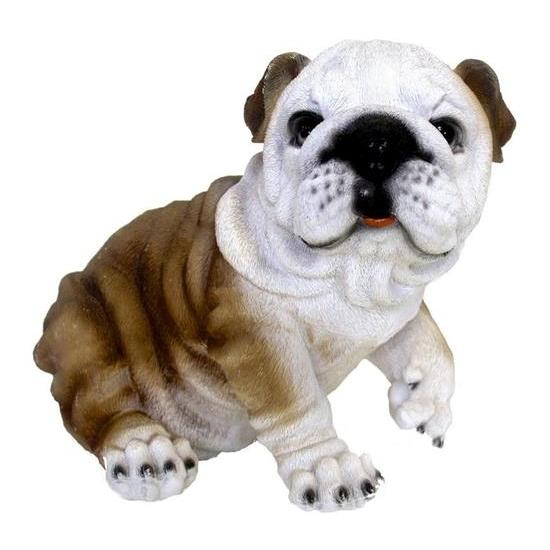Tuin Bulldog hond beeldje 25 cm