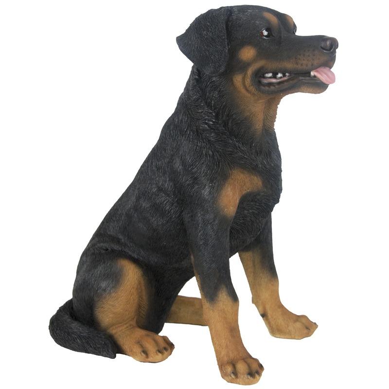 Tuinbeeld Rottweiler 49 cm