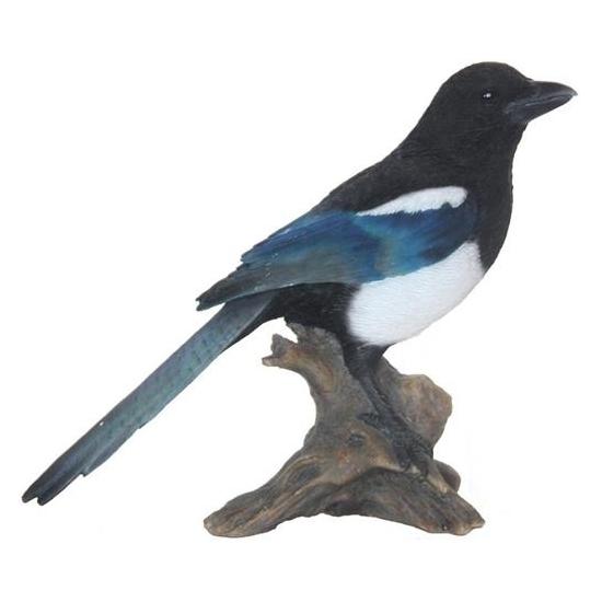 Tuinbeeldje Ekster vogeltje 22 cm