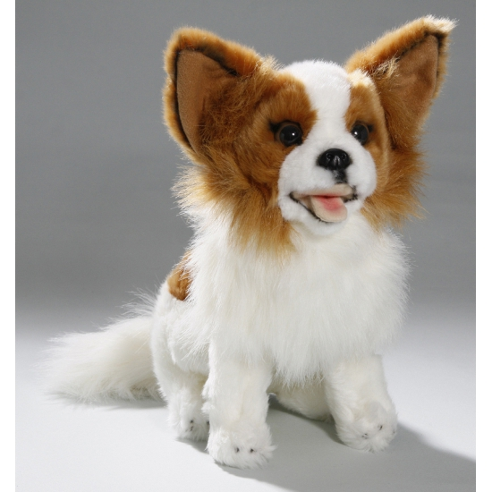 Zittende Chihuahua knuffel dier 25 cm