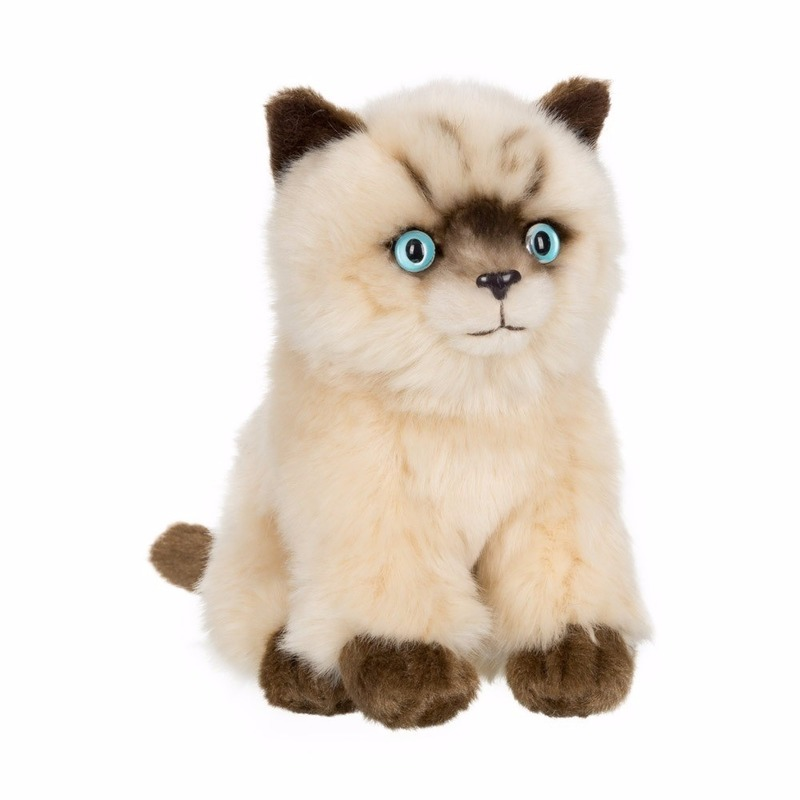 Zittende Siamese katten/poezen knuffel 15 cm