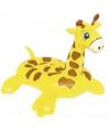Opblaasbare giraffe voor kinderen