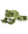Knuffeldier groene kikker 18 cm