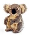 Pluche grijze Koalabeer 28 cm