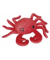 Rode krabben knuffels 30 cm