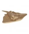 Knuffel pijlstaartroggen 30 cm