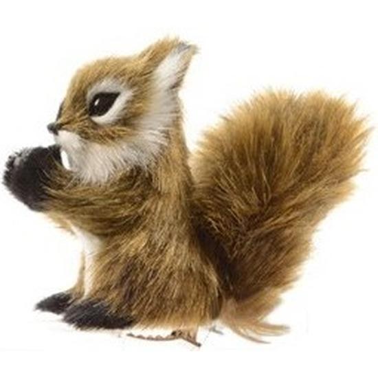 Afbeelding 1x Kerst hangdecoratie op clip lichtbruin eekhoorntje 8 cm door Animals Giftshop