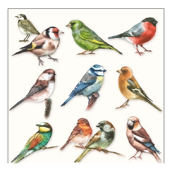 20x Vogeldecoratie servetten 33 x 33 cm Vogel print