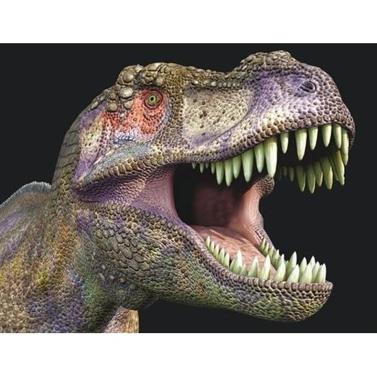 3D koelkast magneetje met T-rex dinosaurus