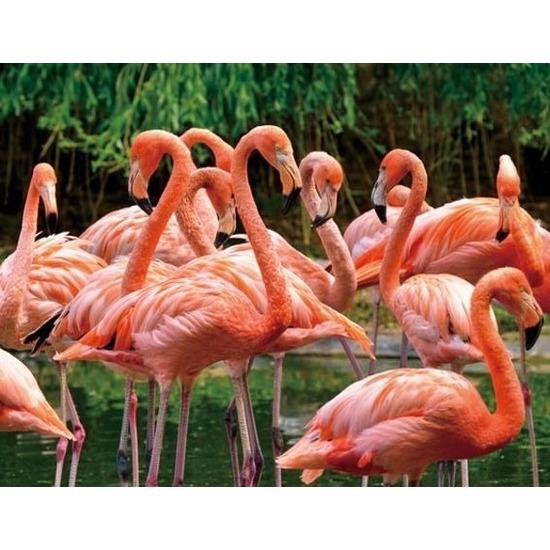 3D koelkast magneetje roze flamingo