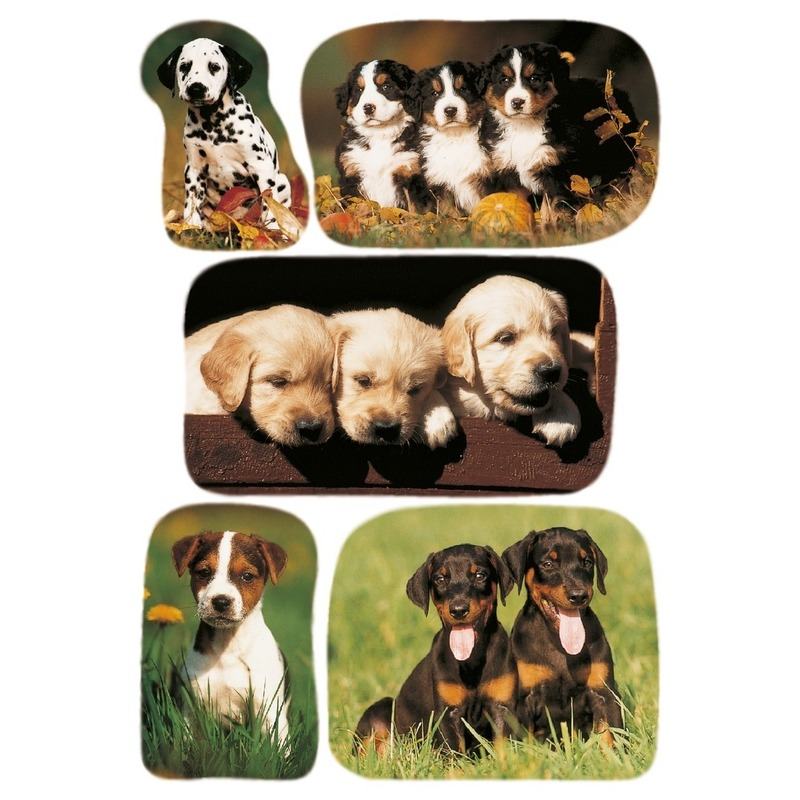 3x Honden/puppy stickervellen met 5 stickers