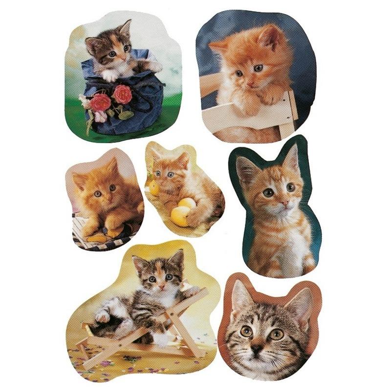 3x Poezen/katten stickervellen met 7 stickers